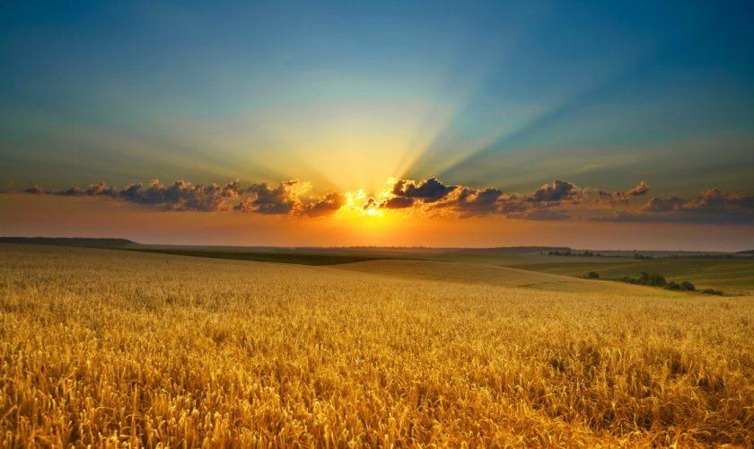 Când răsare și când apune soare în luna august. Ziua începe să se micșoreze